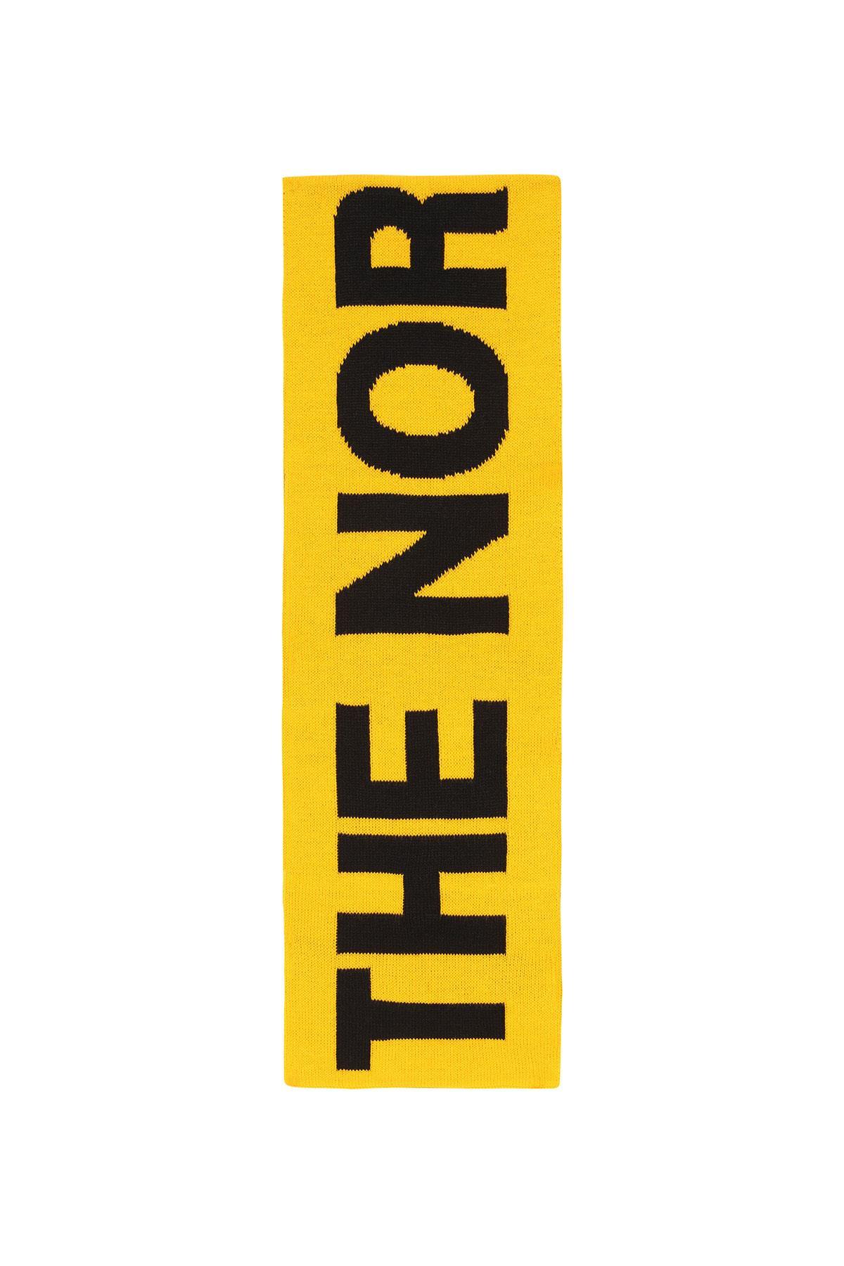 The North Face Logo Scarf Nf0A3Fl6Lr01